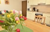 Wohn-/Essbereich mit Einbauküche - Apartment Siebenpfeiffer, Neustadt / Weinstr.