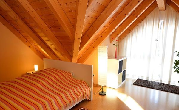 zusätzliches Bett auf Galerie - Haus Stachel, Apartment Dorsa, Neustadt / Weinstr., Weindorf Hambach