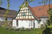 Blick vom Garten auf Terrasse und Haus - Ferienwohnung Hof Albert, Weindorf Hambach, Neustadt / Weinstr. (Pfalz)