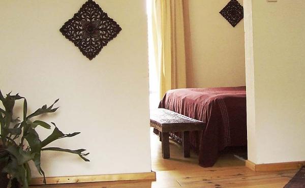 Wohn -und-Schlafzimmer - Ferienwohnung Goldberg, Haus Mandelblüte, Weindorf Gimmeldingen, Neustadt / Weinstr. (Pfalz)